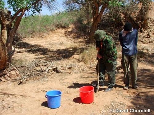 Setting bucket traps