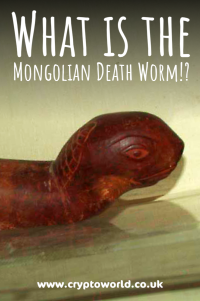 What is the Mongolian Death Worm?