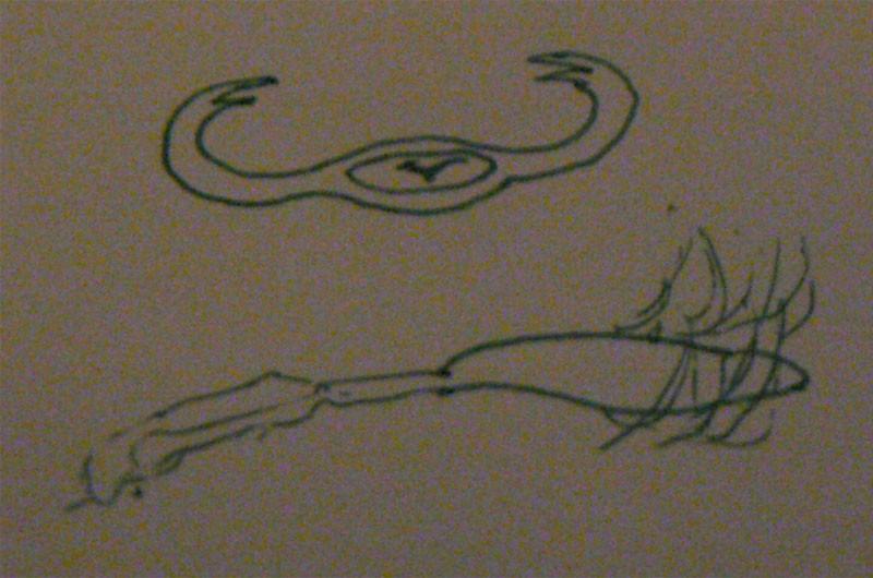 CA witness says UFO looked like creature!