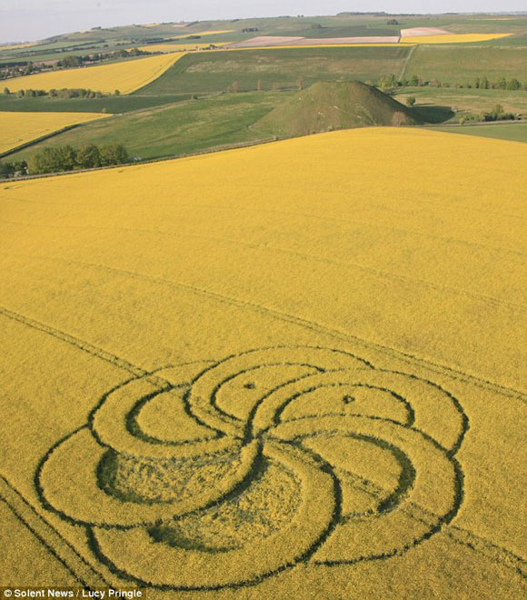 First Crop Circle of 2011 in a field near Silbury Hill Wiltshire