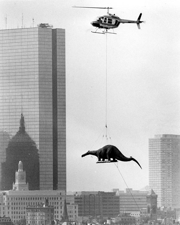 Delivering dinosaurs for exhibit at the Boston Museum of Science. Arthur Pollock,1984