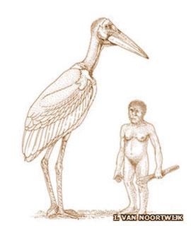 Artist's impression of Giant Stork next to a Homo floresiensis hobbit