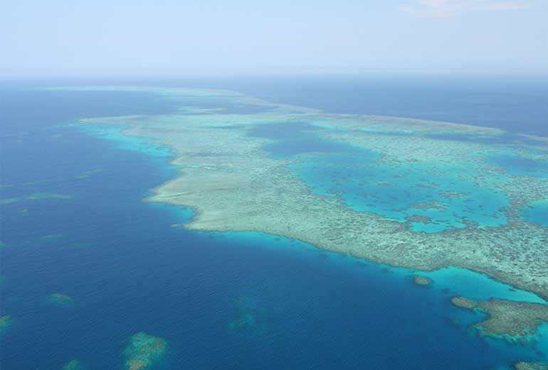 Great Barrier Reef (c) Dai Fujihara