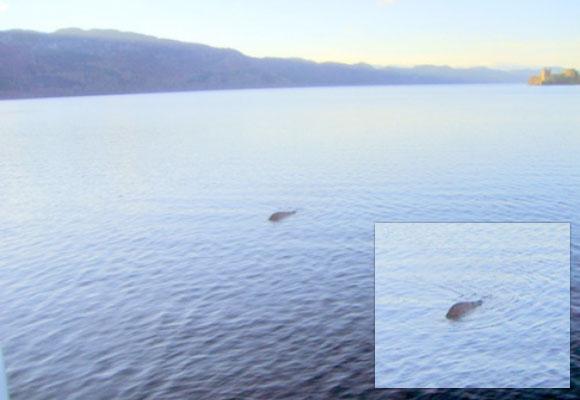 Nessie — Loch Ness Monster?